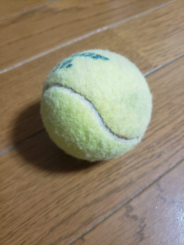 テニスボール!